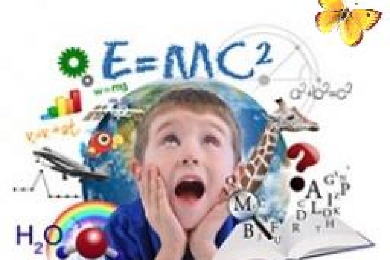 vol hoofd, cursus, online, opvoeding, boze buien
